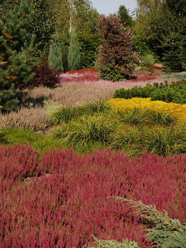 naturalistyczny ogród